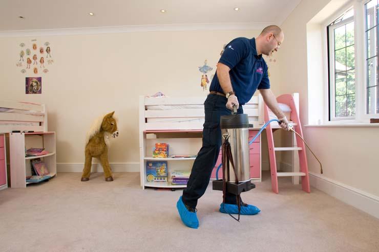 Domestic Clean | Glasgow